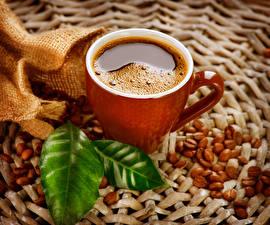 Фотографии Кофе Чашка Зерна Продукты питания
