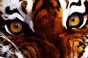 Картинка Глаза Тигры Рисованные Крупным планом Животные