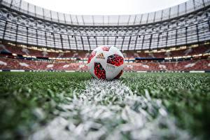 Обои Футбол Мяч Газон Стадион Russia FIFA World Cup 2018, Adidas Telstar 18 Спорт