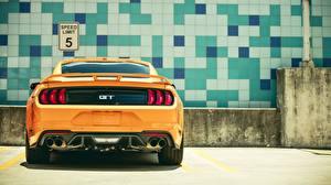 Картинки Ford Сзади Желтый Mustang GT 2018 Fastback Sports Автомобили