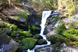 Фотографии Германия Водопады Камни Утес Мох Ручей Triberger Wasserfall Природа