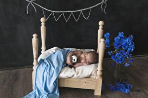 Картинки Грудной ребёнок Спящий Кровать Ребёнок