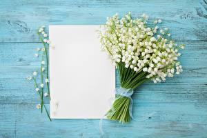 Картинка Ландыши Лист бумаги Шаблон поздравительной открытки