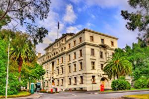 Картинки Мельбурн Австралия Здания Улица Пальмы Commonwealth Parliamentary Offices