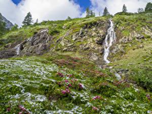 Обои Нидерланды Водопады Холмы Кусты Трава Almen Gelderland Природа