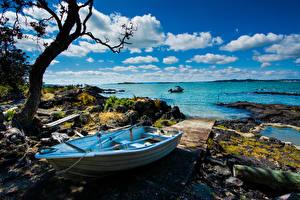 Фотография Новая Зеландия Берег Лодки Камень Деревья Rangitoto Island Природа