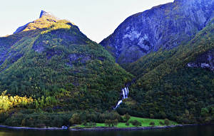 Фотография Норвегия Горы Леса Побережье Aurlandsfjorden Природа