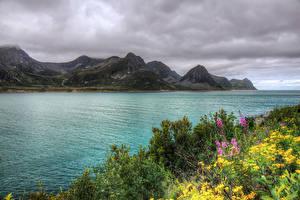 Обои Норвегия Реки Горы HDRI Кусты Husoy Природа
