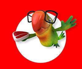 Обои Попугаи Цветной фон Очки Клюв 3D Графика