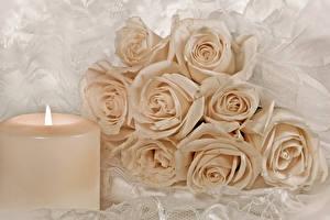 Картинки Розы Свечи Цветы