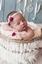 Фото Роза Младенец Спит ребёнок