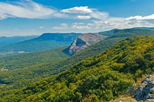 Фотография Россия Крым Пейзаж Горы Леса