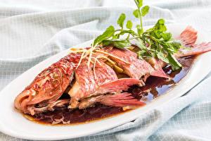 Обои Морепродукты Рыба Еда