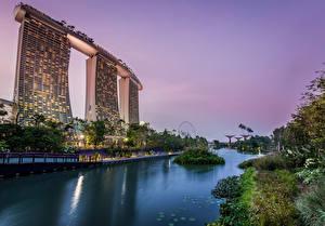 Фотография Сингапур Сады Вечер Gardens by the Bay Природа