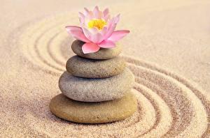 Обои Камни Песок zen