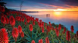 Картинки Рассветы и закаты Речка Пирсы Природа