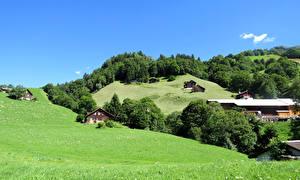 Картинка Швейцария Дома Луга Леса Деревня Холмы Weissenberge Города