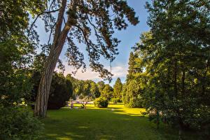 Картинка Швейцария Парки Газон Деревья Кусты Kannenfeldpark Природа