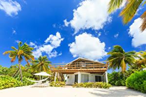 Обои Тропики Дома Небо Пальмы Облака Cayman Islands Caribbean Sea Города