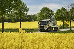 Фотографии Грузовики Поля 2017 Scania G 370 6×2 rear-steer skip loader