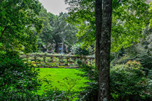 Картинки Штаты Сады Деревья Кусты Gibbs Gardens Природа