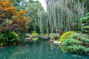 Картинки Штаты Сады Пруд Кусты Gibbs Gardens Природа