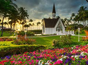 Фотографии Штаты Парки Дома Петунья Рассветы и закаты Газон Пальмы Grand Wailea Природа