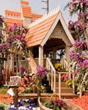 Фотографии Штаты Парки Здания Розы Орхидеи Антуриум Калифорния Дизайн Pasadena