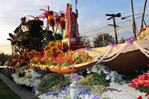 Картинка Штаты Парки Черепахи Роза Корабли Калифорния Дизайн Pasadena
