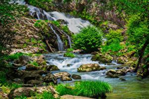 Картинка Штаты Водопады Парки Камень Мох Кусты Great Smoky Mountains National Park Природа