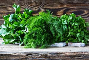 Картинка Овощи Укроп Зеленый Пища