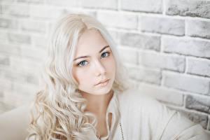 Обои Стена Блондинка Лицо Взгляд Девушки