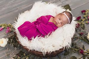 Фотография Доски Корзинка Грудной ребёнок Сон Дети