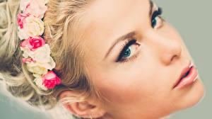 Фотографии Блондинка Лицо Смотрит Девушки
