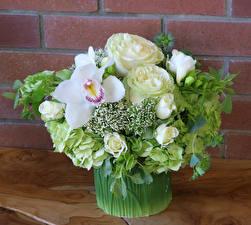Фото Букеты Розы Орхидеи