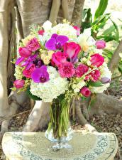 Фотографии Букеты Розы Орхидеи Гвоздики Гортензия Ваза