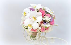 Фото Букеты Розы Орхидеи Серый фон Цветы