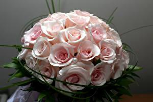 Картинки Букеты Розы Розовый Цветы