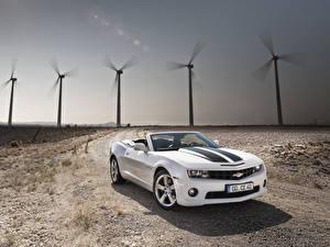 Картинки Шевроле Белые Кабриолет 2011-13 Camaro Convertible Автомобили