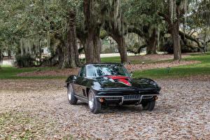 Фотографии Chevrolet Старинные Металлик Черный 1967 Corvette Sting Ray L68 427-400 HP Автомобили