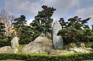 Обои Китай Гонконг Парк Камни Дерева Nan Lian Garden Природа