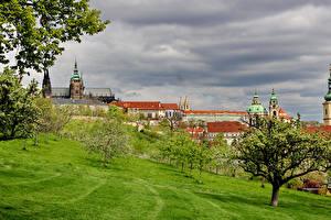Обои Чехия Прага Здания Замок Дерево Города