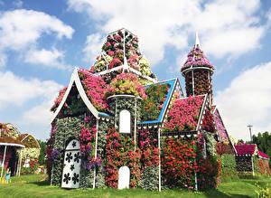 Фотографии Дубай Сады Дома Петунья Дизайн Miracle Garden
