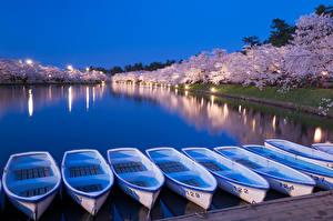 Обои Япония Парки Вечер Цветущие деревья Лодки Пирсы Hirosaki park