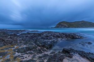 Картинки Новая Зеландия Побережье Tapotupotu Bay Природа