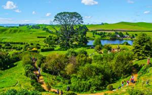 Картинка Новая Зеландия Парки Пейзаж Пруд Деревня Кусты Matamata Hobbit village Природа