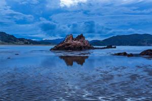 Фотографии Новая Зеландия Залив Скале Waikawau Bay Природа