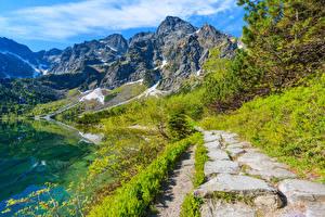 Фото Польша Горы Озеро Пейзаж Тропинка Lake Morskie Oko Tatra Mountains