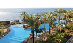 Фото Португалия Тропики Курорты Плавательный бассейн Пальмы Шезлонг Funchal Madeira Islands Природа