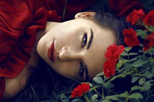 Картинки Розы Шатенка Лицо Смотрит Девушки